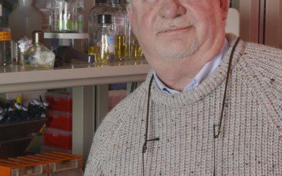 Defining how bacteria become resistant to antibiotics